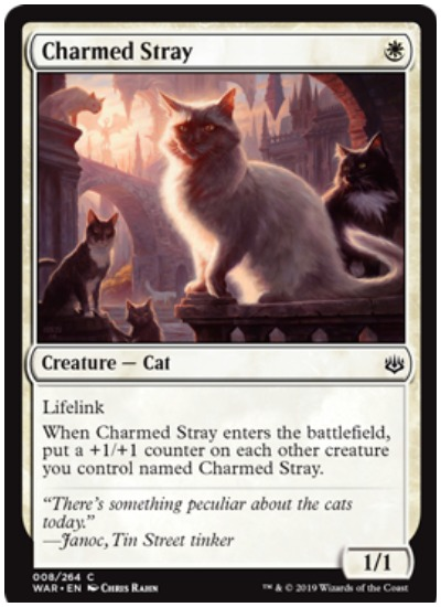 Charmed Stray MTG War of the Spark common